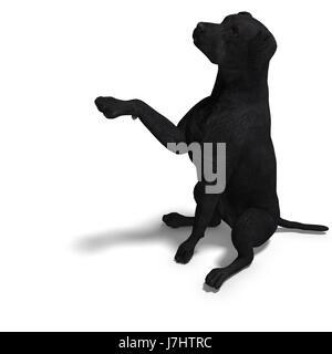 black labrador puppy popart portrait illustration illustration funny cartoon enthusiasm amusement enjoyment joy gag joke pleasure stock photo
