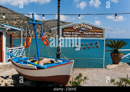 Octopuses hung up to dry on washing lines, Plaka beach, Crete, Greece, Europe - Stock Photo