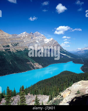 Peyto Lake with glacier water. Banff NP, Alberta, Canada - Stock Photo