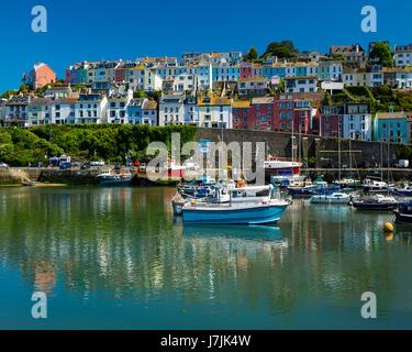 GB - DEVON: Picturesque Brixham Harbour & Town - Stock Photo