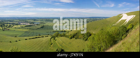View from Westbury White Horse. Hill figure created by exposing white chalk on the escarpment of Salisbury Plain - Stock Photo