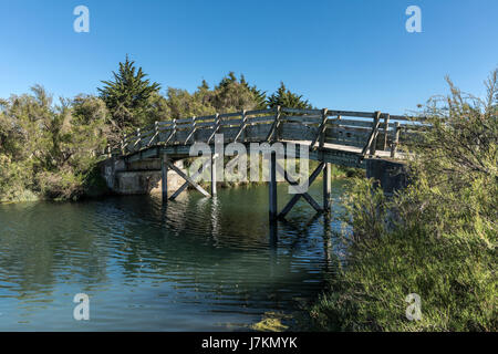 Wooden bridge in the Olonne swamp (Vendee, France) - Stock Photo