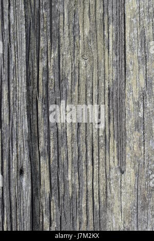 Old grey wooden board pattern or background. Vertical board made of wood. Part of outside wall of old barn or shed. - Stock Photo