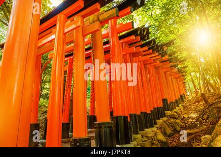 Torii gates Kyoto - Stock Photo