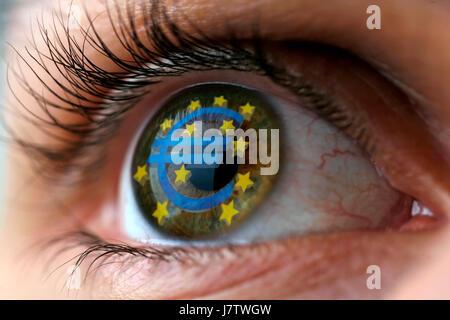 detail eye organ euro business dealings deal business transaction business - Stock Photo