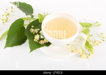 Studio shot of hot linden tea in a fine white porcelain cup on a wooden tabletop. Large-leaved Linden, Tilia platyphyllos. - Stock Photo