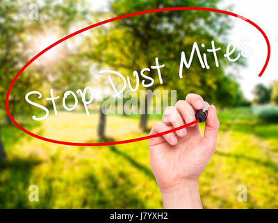Man Hand writing Stop Dust Mites  with black marker on visual screen. Isolated on background. Business, technology, - Stock Photo