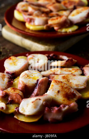 closeup of an earthenware plate with pulpo a la gallega, a recipe of octopus typical in Spain served on potatoes - Stock Photo