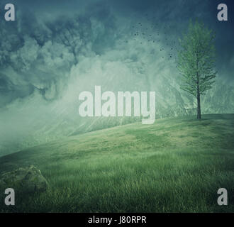 Mystycal mountain landscape with misty hills, green grass and a lone tree on the top. Beautiful and fresh background. - Stock Photo