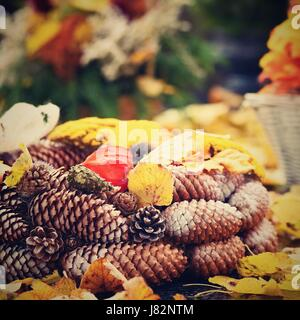 Autumn nature concept. Beautiful autumn decorations. Colorful autumn flowers at the cemetery - Halloween. - Stock Photo