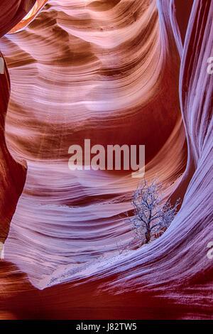 Secret Canyon slot canyon in Arizona - Stock Photo