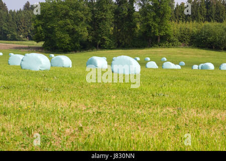 spring acre straw ball hay-clench plastic sheet meadow protected sheltered - Stock Photo