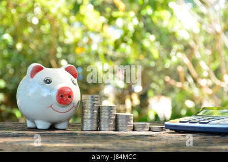 idea, success, piggy bank and calculator put on bark and nature background - Stock Photo