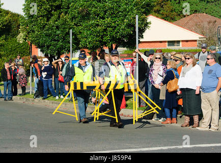 Crowd control operatives wearing hi vis jackets closing off the street during a festival, Berry, New South Wales, - Stock Photo