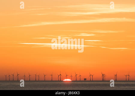 Orange dawn sky over the Thanet Offshore Windfarm on the horizon. Wind turbines silhouetted against the bright orange - Stock Photo
