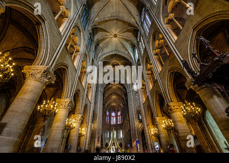 PARIS - JULY 1: Notre Dame de Paris Cathedral Interior on July 1, 2013. Notre Dame construction began in the year - Stock Photo