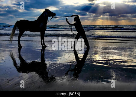 Silhouette of a man and his horse on the Mediterranean beach at sunset. Photographed near Acco, Israel - Stock Photo