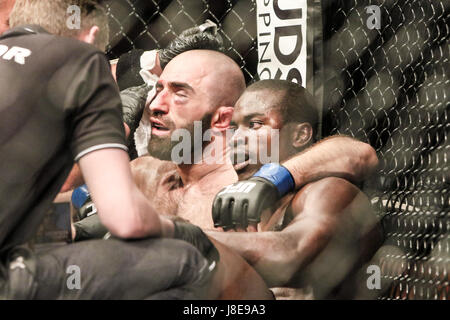 Ericsson Globe , Stockholm, Sweden . 28 May 2017. Omari Akhmedov defeats Abdul Razak Alhassan during UFC Fight  - Stock Photo