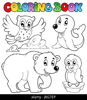 Colour Winter Animal Animals Paint Painted Colouring Book