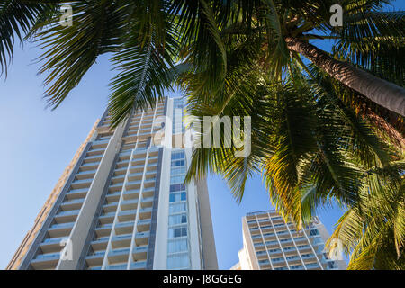 Luxury hotel buildings and palm trees at sunset, Nha Trang, Vietnam. - Stock Photo