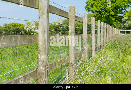 Wooden fence with barbed wire on the edge of a field in the UK. - Stock Photo