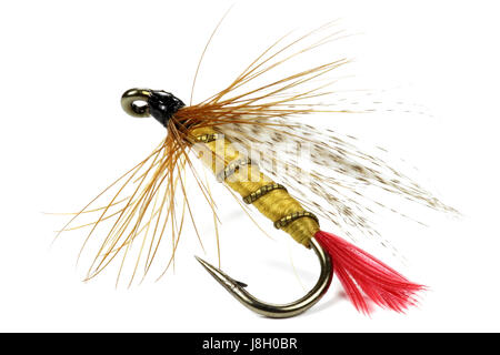 artificial fly for fishing isolated on white background - Stock Photo