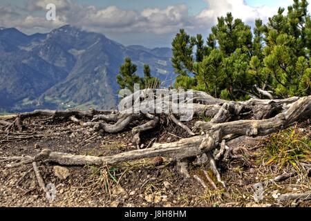 mountains, alps, hike, go hiking, ramble, bavaria, mountain, migrate, - Stock Photo