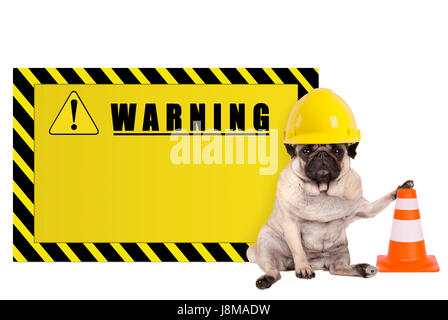 pug dog with yellow constructor worker safety helmet and blank warning sign, isolated on white background - Stock Photo