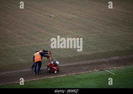 Manchester City Etihad Stadium  pitch repair, - Stock Photo