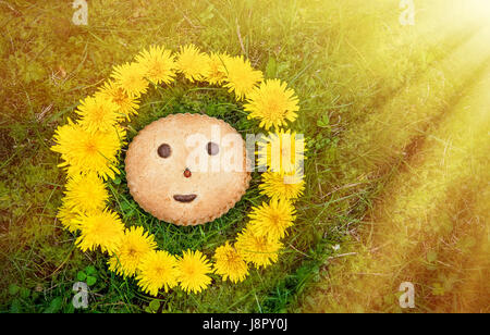 Cookies with character smiles and ladybug on the background of green grass in wreath of dandelions in the sunlight. - Stock Photo