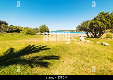 Palm shadow in Liscia di Vacca shoreline, Sardinia - Stock Photo
