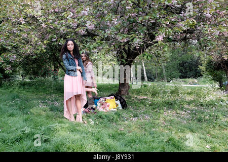 Two woman  under a blossom treee in Regents Park, London, England UK. - Stock Photo