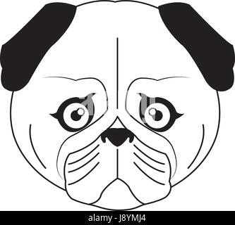 vector color sketch cute serious dog fawn pug breed - Stock Photo