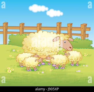 Sheep and lambs in a field in a meadow farm Stock Photo