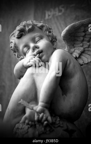 death, wing, cemetery, mourning, sorrow, angel, angels, appearance, young, - Stock Photo