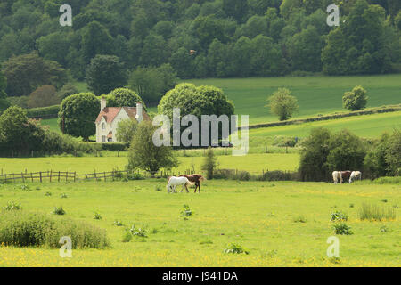 An English Rural Landscape in the Hambleden Valley in the Chiltern Hills with grazing horses - Stock Photo