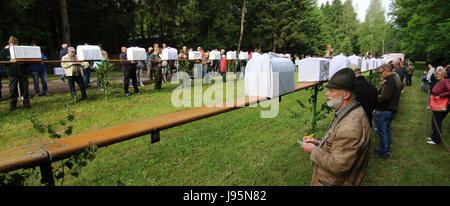 Benneckenstein, Germany. 5th June, 2017. Visitors stand next to birdcages containing a chaffinches in Benneckenstein, - Stock Photo