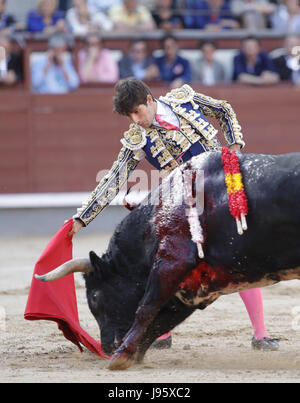 Spanish bullfighter Alberto Lamelas fights with his first bull of the evening the ocassion of the 25th the San Isidro - Stock Photo