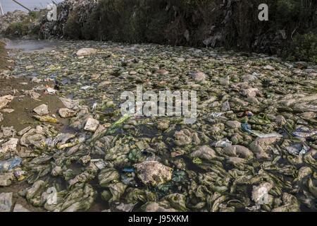 Dhaka, Dhaka, Bangladesh. 25th May, 2017. A drain blocked with plastic bags in Dhaka. Bangladesh became the first - Stock Photo