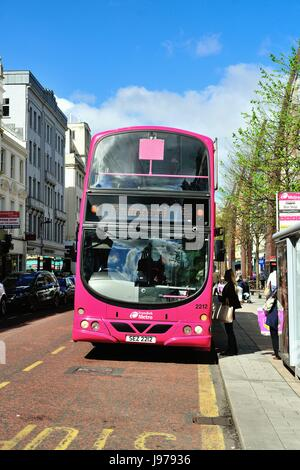 A city double-decker bus in a bus lane in Belfast city center on Donegall Place. Belfast, Northern Ireland, United - Stock Photo