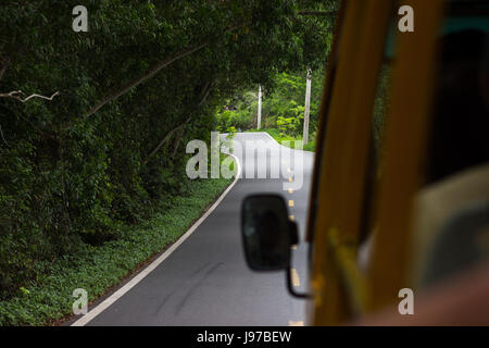 An asphalted winding road in a dense rainforest with lumens through the trees through which sunlight penetrates - Stock Photo