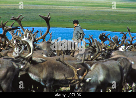 Nomadic Chukchi reindeer herder on the Chukchi or Chukotka Peninsula, in the Russian Far East. - Stock Photo