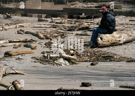 Man alone on the shore of Lake Erie, Ohio, between dead tree branches laid down by water - Stock Photo