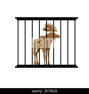 Deer in a cage. Animal in Zoo behind bars. Elk with large horns in captivity. Wild animal captive people. - Stock Photo