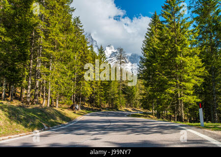 Pale di San Martino mountains, in Italy's Alps, are the background of this scene taken from the forest road leading - Stock Photo