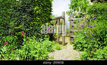 Open wooden gate in an English cottage flowering garden, on a summer day. - Stock Photo