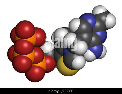 Thiamine triphosphate molecule. 3D rendering. Atoms are represented as spheres with conventional color coding - Stock Photo