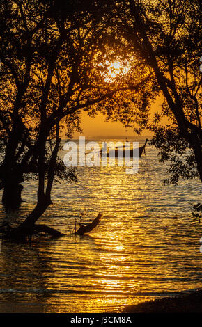 Sunrise in the Mangroves Railay Beach Krabi Province Southern Thailand with a long boat silhouette - Stock Photo