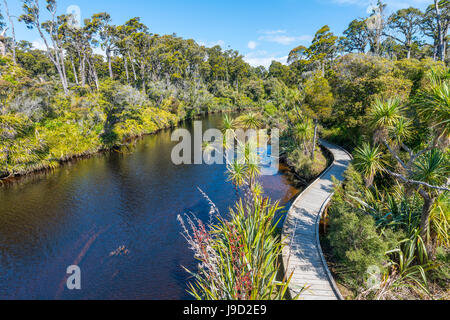 River with path, Ship Creek, moderate rainforest, Haast, West Coast, New Zealand - Stock Photo