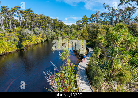 Female hiker at river with path, Ship Creek, moderate rain forest, Haast, West Coast, New Zealand - Stock Photo